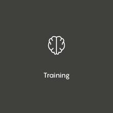 Iber online courses